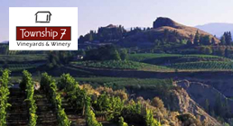 Limo-wine-tour-Township7